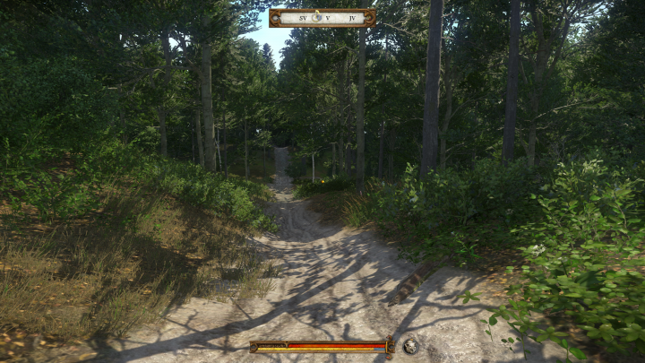 Kingdom Come Deliverance Forest